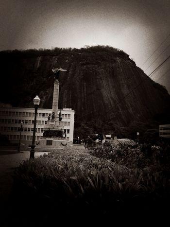Climbing A Mountain Climbing Rio De Janeiro Urca Morro Da Babilônia Jungle Rock Mountain Rocks