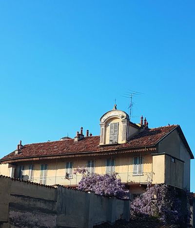 Clear Sky Blue Architecture Travel Destinations Sky History City No People Outdoors Day Old House Wisteria Nostalgic  Freshness Spring Blooms EyeEmNewHere Langhe Piedmont Italy Abundance Fragility In Style Old Building Exterior Glicine