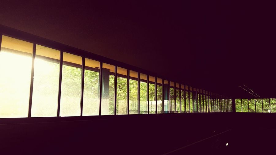 This Is Light day 7. Contrast Windows Reflection Darkness And Light Trees Leisure Centre