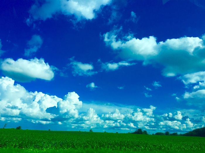 My world Field Cloud - Sky Tranquility Beauty In Nature Nature Tranquil Scene Day