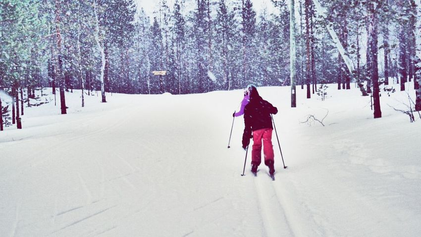 Winter Snow Cold Temperature Warm Clothing Outdoors Tree Day People Cross Country Skiing in Finland Kittilä