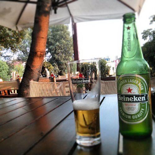 Heineken Beer Beers