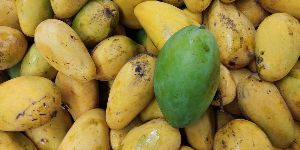 Ripe green and yellow Mango sale in fruits market. Mango Ripe Fruit Fresh Produce Yellow And Green Market Vendor Vector Isolated Fruit Isolated Fruit Market Asia Fruit
