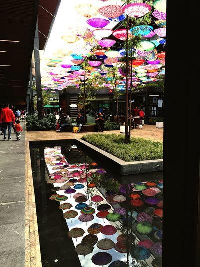 Umbrellas Isherphoto Isherqro Querétaro