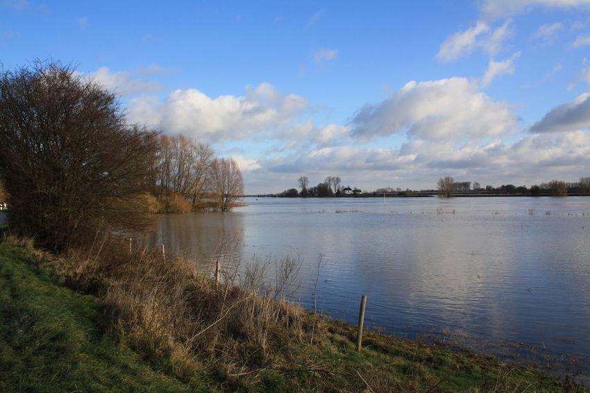 Hoog Water Uiterwaarden Beauty In Nature Day Nature No People Outdoors Rijn Sky Water