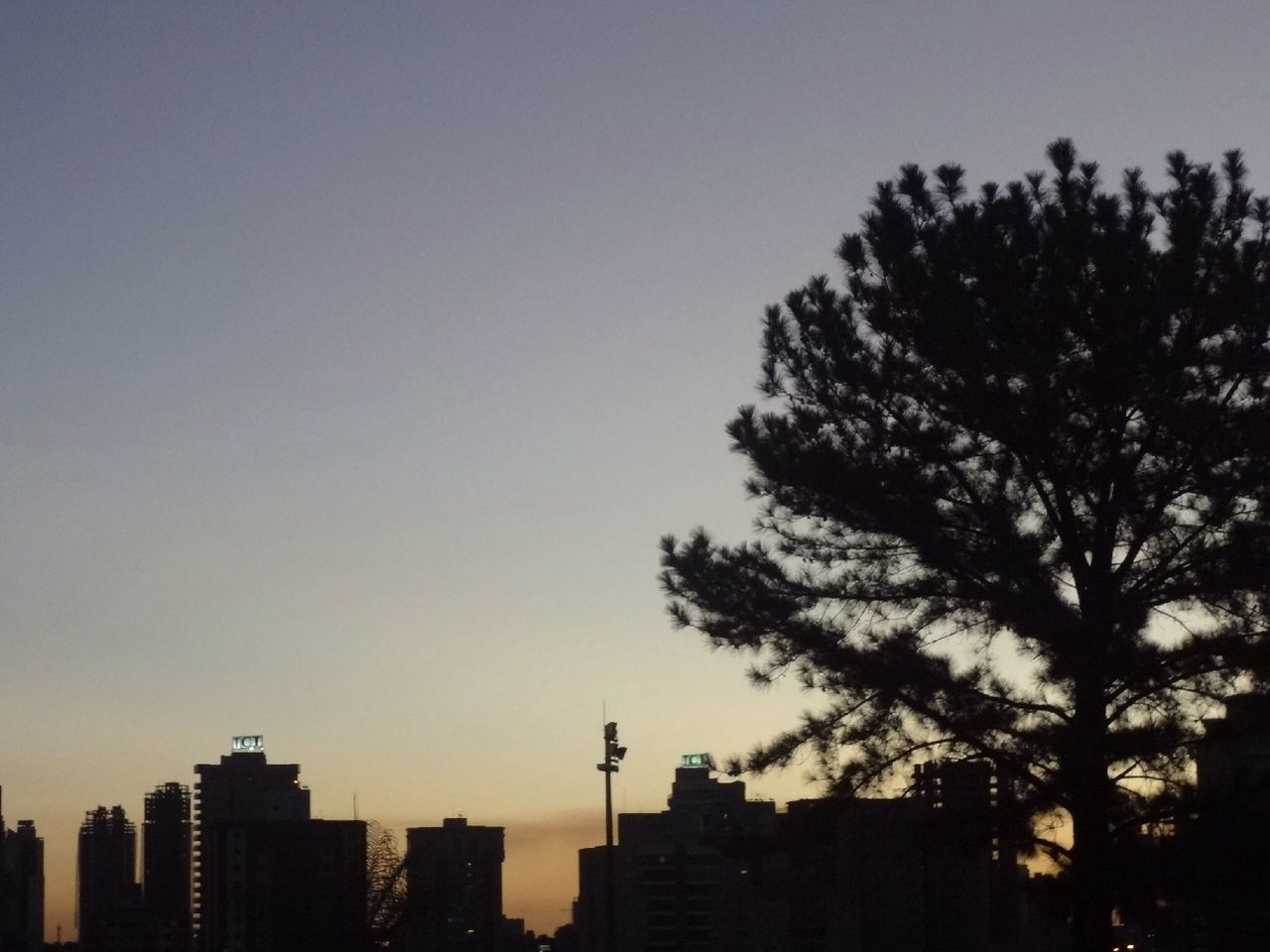 city, urban, architecture, skyscraper, sunset, cityscape, growth, modern, no people, place, tree, building exterior, clear sky, sky, high, outdoors