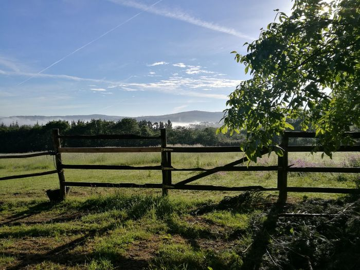 Morning mist in the distamce Gate Tree Sky Outdoors Nature Beauty In Nature CaminodeSantiago Eye4photography  Capture The Moment Freshness No People EyeEm Nature Lover Photography Naturelovers Taking Photos Landscape Blue Sky Tranquility Mist Fence Morning Light Nofilterneeded