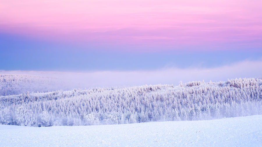 Erzgebirge EyeEmNewHere Beauty Beauty In Nature Cold Temperature Forest Frozen Landscape Landscaped Ore Mountains Outdoors Polar Climate Rural Scene Scenics Sky Snow Snowing Sunset Tranquil Scene Tranquility Tree Weather White Color Winter Wrapped