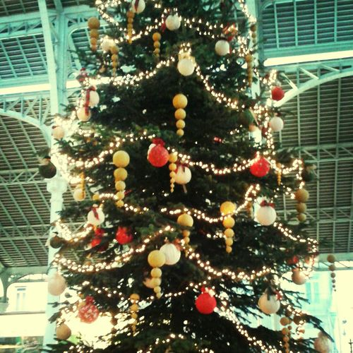 Ancora alberi di Natale ❤ Christmas Tree Christmas Christmas Lights Happiness ♡