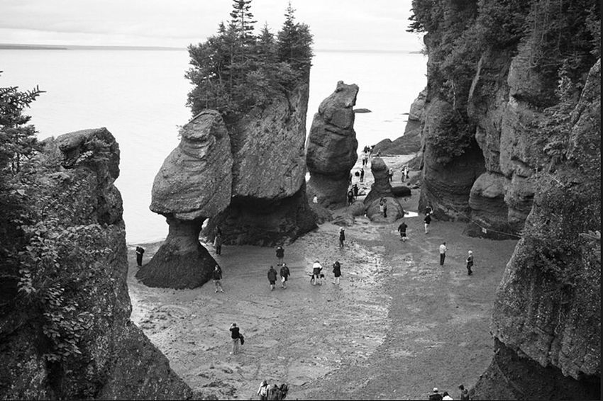 Walking on the sea floor at the Hopewell Rocks when the tide goes out. Tidal Basin Hopewell Rocks Flower Pot Rocks Walking On The Sea Floor Landscapes Seascapes Black And White Tidal Rock Formations
