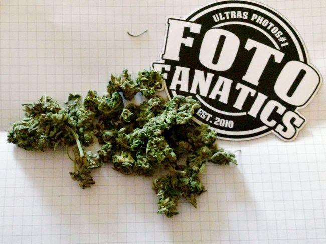 Weed FotoFanatics Ganja