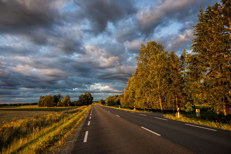 Road amidst plants and trees against sky