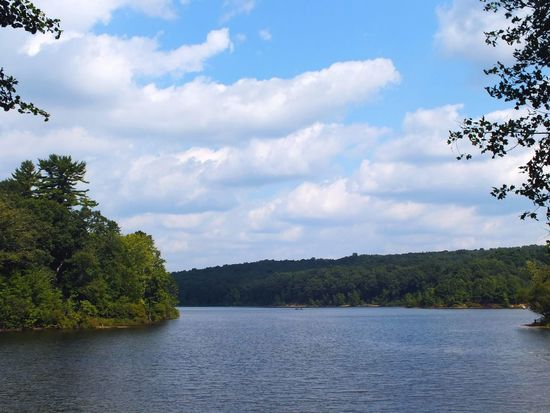 Beauty In Nature Connecticut Day Green Color Idyllic Lake Lake View Lakeside Lakeview Nature Nature Nature Photography Nature_collection No People Non-urban Scene Outdoors Peaceful Scenics Sky Tranquil Scene Tranquility Tree Water Water_collection Waterfront