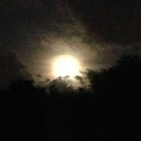Moon Over Miami Supermoon 2014 Lunalunera Cartagenera