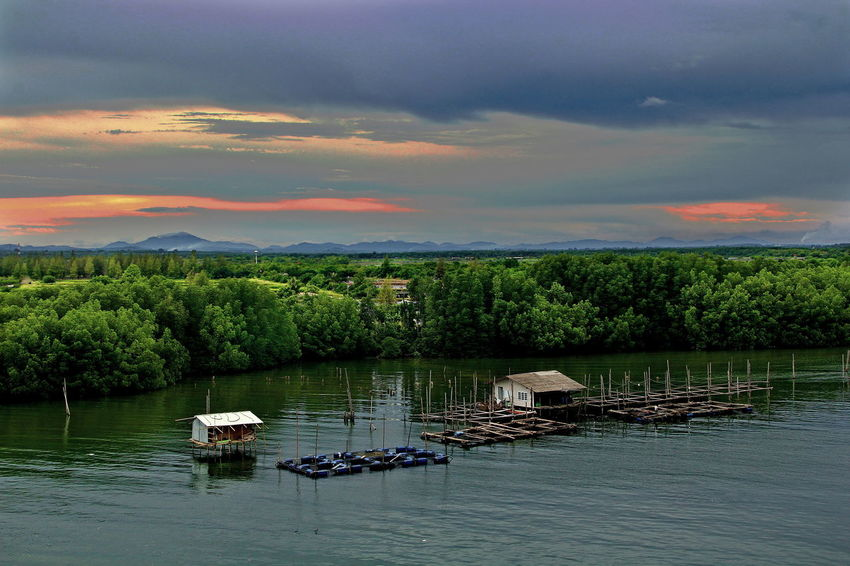Mangrove Forest In thailand. Beauty In Nature Cloud - Sky Day Fishing Houses Forest Lake Landscape Mangrove Life Nature Nautical Vessel No People Outdoors Reflection Scenics Sky Social Issues Sunset Tranquil Scene Tranquility Tree Water