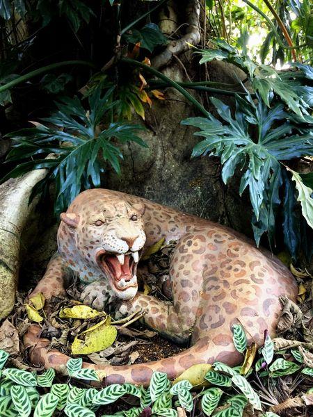 Jaguar Wild Ferocious Fierce Ferocity Sculpture Statue Feline JAGUAR Animal Wildlife One Animal Animals In The Wild Nature Plant Animal Themes No People Forest Outdoors Tree Mammal