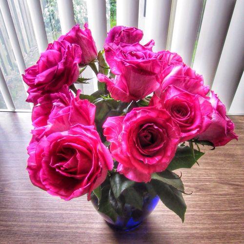 Happy Sunday 💚🌹💚 Flower Rosé Rose - Flower Pink Color Flower Arrangement Close-up Inflorescence Indoors  Fragility Nature