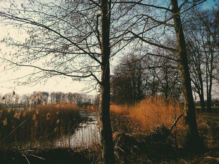 Landscape Vscocam The EyeEm Facebook Cover Challenge