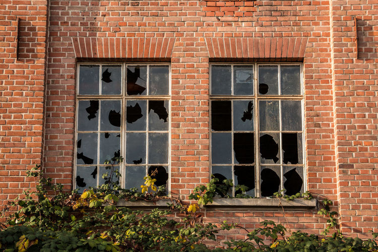 Old destroyed brick house ruin with broken windows Building Exterior Window Architecture Brick Built Structure Brick Wall Wall Day Building Plant Flower Flowering Plant Outdoors No People Nature Wall - Building Feature