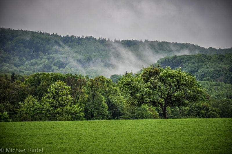 Nature_collection Misty Mountains  Nature_collection Landscape_Collection