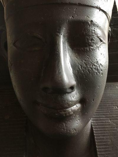Close-up Sphinx