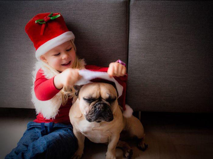 Child playing with dog at christmas