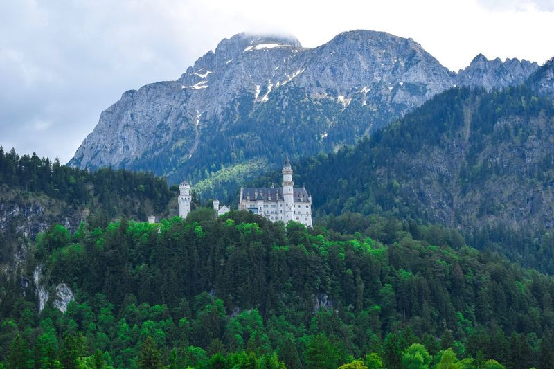 Castle and nature Castle Mountain Plant Tree Architecture Sky Built Structure Beauty In Nature Nature Building Exterior Belief Building Religion Scenics - Nature Growth Spirituality Green Color Mountain Range Place Of Worship No People Outdoors
