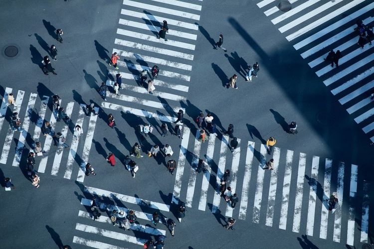 Crowd Large Group Of People Group Of People Real People City High Angle View Architecture Road Marking Street Transportation Crosswalk Symbol Zebra Crossing Crossing Road Walking City Street City Life Sign Outdoors