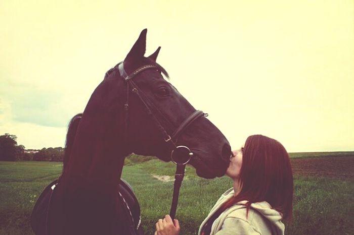 Horse I Feel Free! EyeEm X Vice Do Find Myself