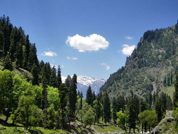 Pehlgam, Jammu And Kashmir, India