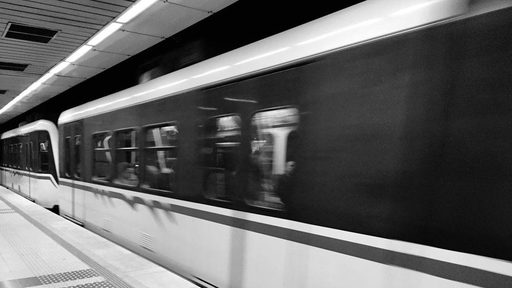 Train Metrobus