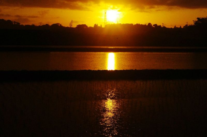 Nippon Photography Sunset Lovers Sunset Nature Naturelovers Water's Surface Paddy Field Country