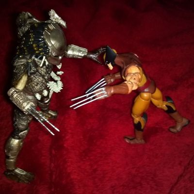 Now that's just embarrassing! Anyone else had this happen when they were younger? The big kids cheated! Weaponx Wolverine Marvel Bazinga Nerd Geek Xmen Actionfigureadventures Buddytoyz Socaltoycrew Mytoysquad Toyplanet Toys4life Toyographe Predator Neca