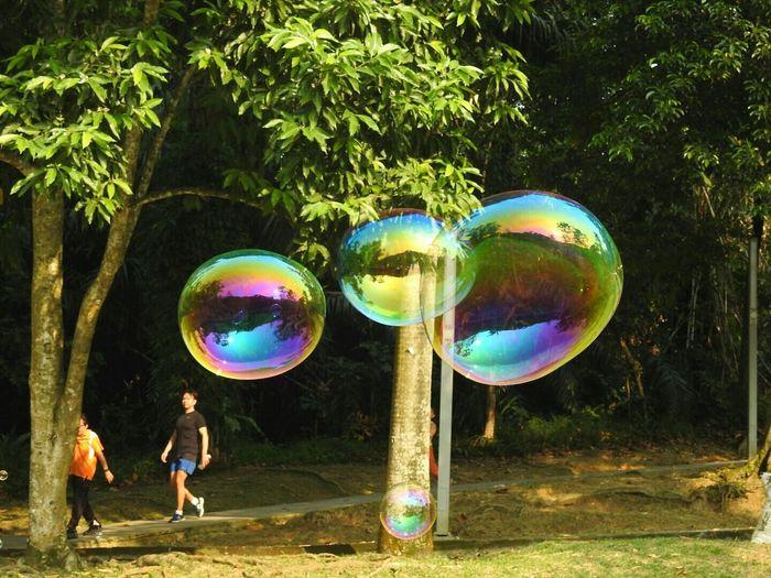 Bubbles... Bubbles...Bubbles.... At The Park EyeEm Best Shots Eyeemphotography Bubbles Eyeem Bubbles EyeEmBestPics Blowing Bubbles Eye4photography  Bubbleology