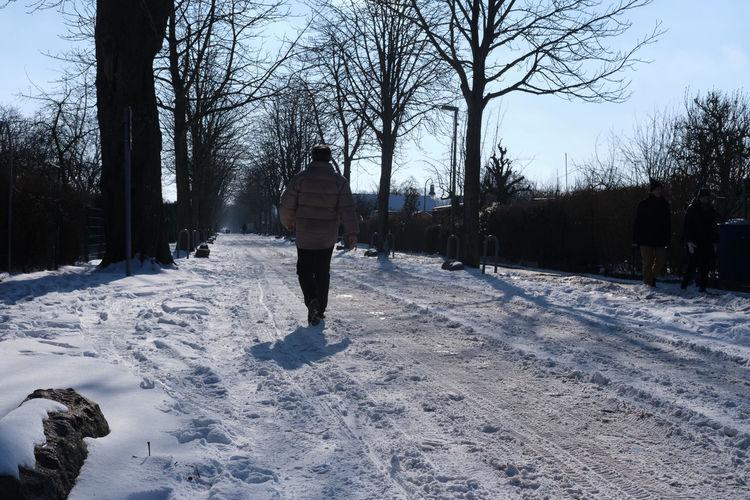 Rear view of man walking on snow field