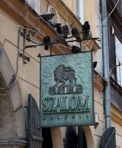 Szalom Gallery Szalom Krakow Architecture No People Outdoors Pigeon Cracow Poland Nikon