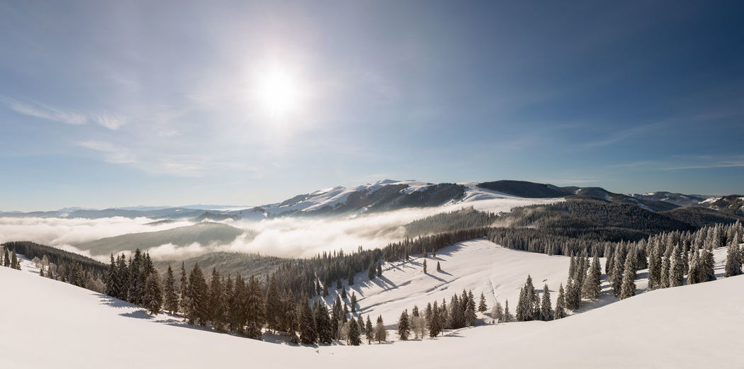 The beauty of winter on the snowy mountains. national park rodnei mountains - romania