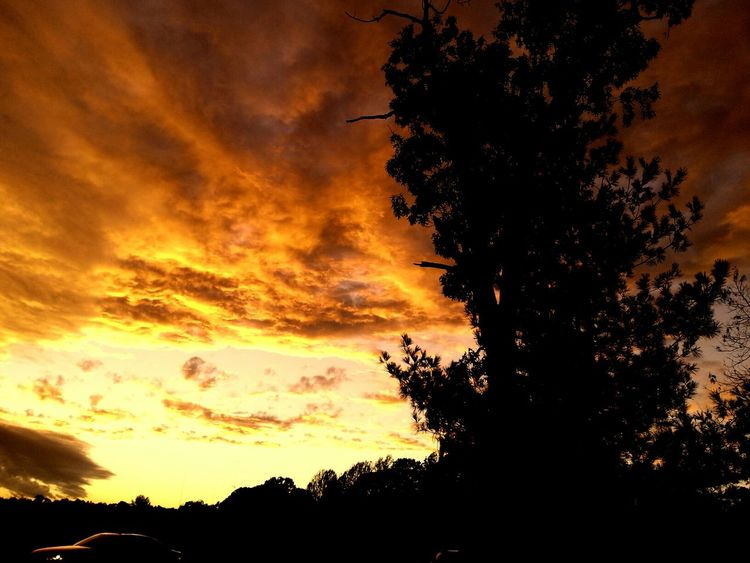 Sunset Sun_collection Cloudporn FireNDaSky Good night.