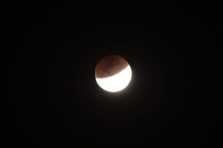 Super blood blue moon series - 5 of 8 Lunar Eclipse Astronomy Beauty In Nature Blood Moon Blue Moon Eclipse Low Angle View Majestic Moon Nature Night No People Outdoors Planetary Moon Scenics Sky Space Space Exploration Super Blood Blue Moon Super Moon Tranquil Scene Tranquility