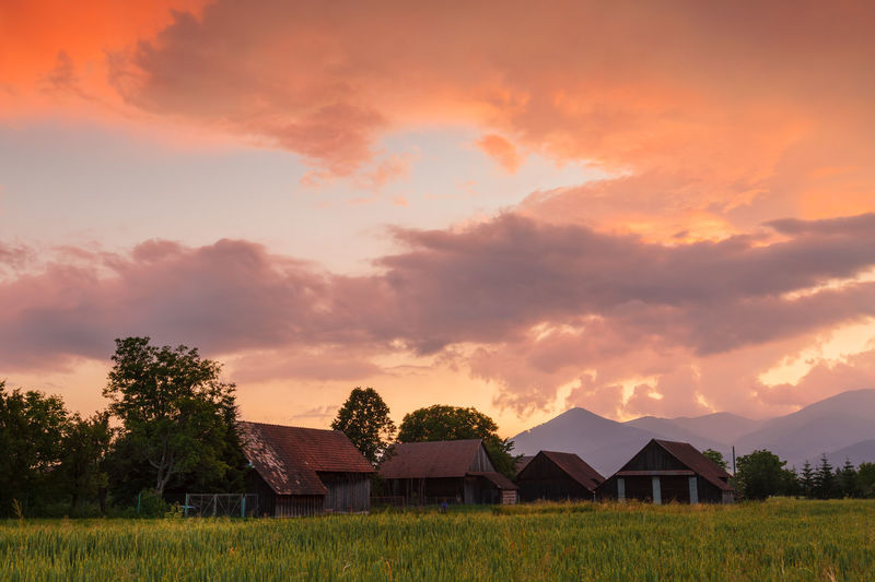 Houses on field against sky during sunset