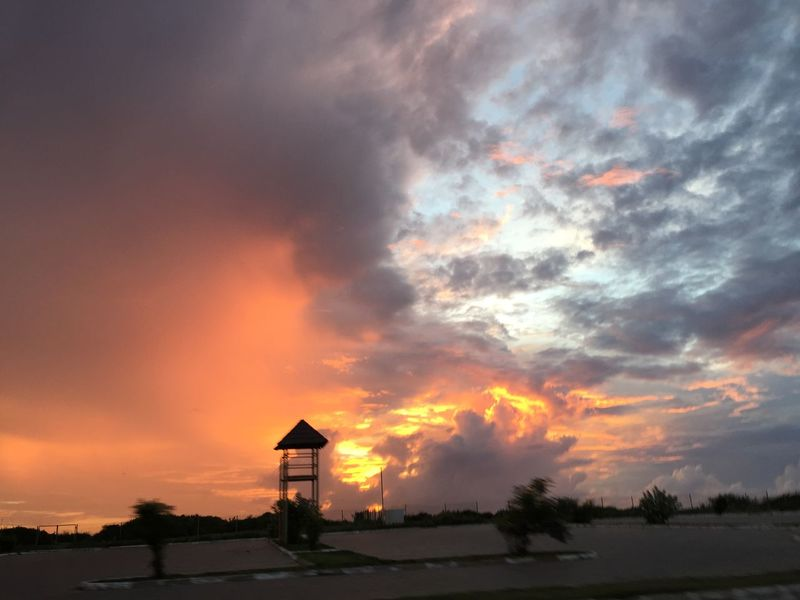 Sunrise on the East coast of Tanzania, Dar-es-salaam, on 30th march 2017 Beauty In Nature Cloud - Sky Cloudporn Clouds And Sky Firey Clouds Firey Sky FireyGlow Fireysky Nature Outdoors Palm Tree Palm Trees Palms Palmtrees Scenics Sky Sky_collection Skyporn Sunlight Sunrise Sunrise And Clouds Sunrise Silhouette Sunrise_Collection Sunrise_sunsets_aroundworld Tree