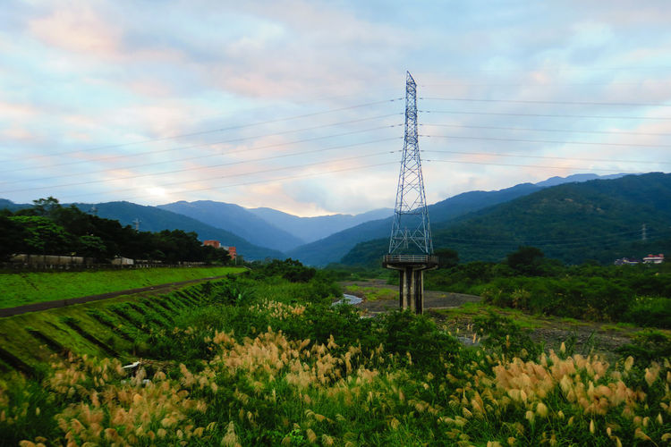 EyeEm Ready   Green Life Miscanthus Travel Vitality Beauty In Nature Blue Cloud - Sky Day Electric Tower  Field Growth Landscape Mountain Mountain Range Nature No People Outdoors Plant Scenics Sky Tranquil Scene Tree Yellow