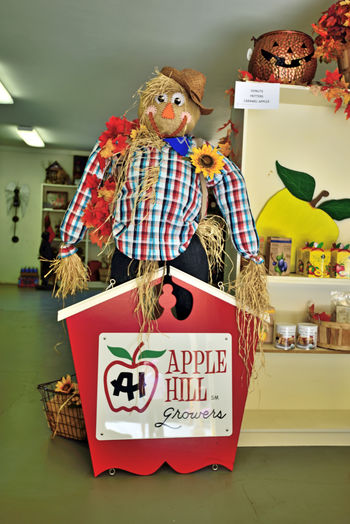 Scarecrows of Apple Hill 2 Sierra Mountain Foothills Apple Hill El Dorado County Scarecrow Protector Of Crops Humanoid Decoys Farmers Mannequin Grocery Store Info Sign Goods For Sale Harvest Season Autumn colors Apple Hill Growers Association 55 Ranches Center For Wine Production Wineries Vineyards  Microbrewery Crops: Grapes,Apples, Pumpkins, Squash Consumer Products History Former Hub Of California Gold Rush 1848-55 Retail Display