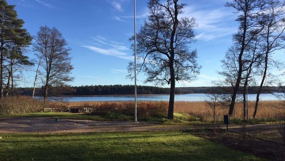Srwshteki jwan Photo By  Kak Xom😬 At Kirkkonummi Finland