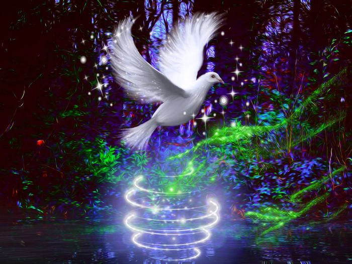 Birth of peace Illuminated Motion Outdoors No People Edit Junkie Softsmudge White Dove ArtWork Absract Art Makebelieve