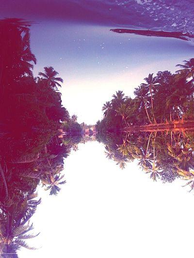 Justflipit Flipit TurnUp Kerala India Backwaters Shadows & Lights Water Reflections Reflection_collection