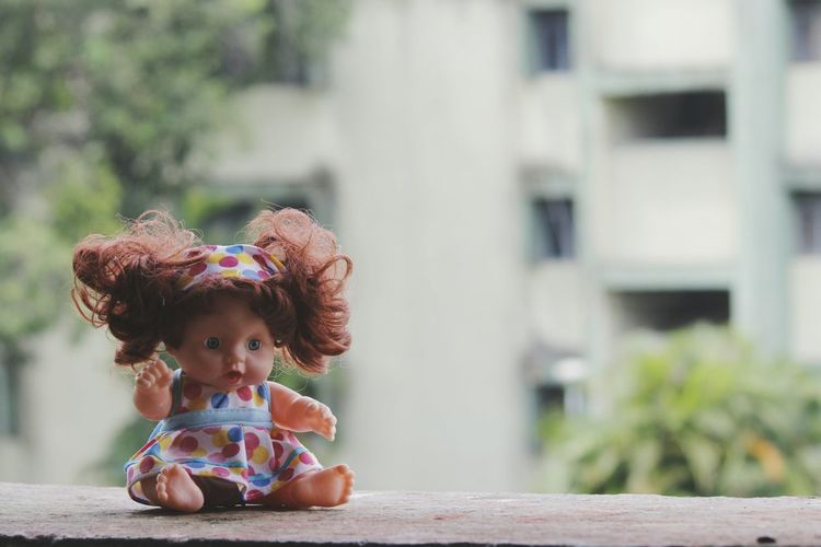 Close-Up Of Doll On Retaining Wall In City