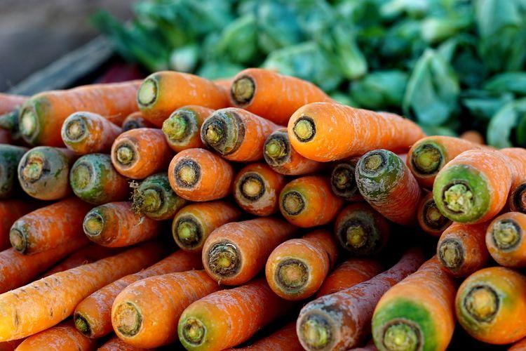 Carrot. Vegetable Orange Color Close-up Carrot Root Vegetable Vegetarian Food Vegan Farmer Market Radish