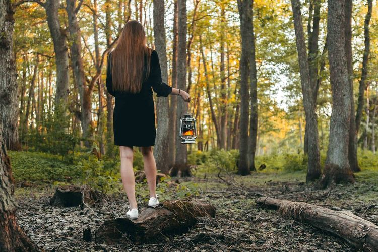 Young girl walking in dense forest with oil lamp. Evening, Summer time. Adult Casual Clothing Day Forest Full Length Hair Hairstyle Land Long Hair Nature One Person Outdoors Plant Rear View Standing Tree Tree Trunk Trunk Women WoodLand Young Adult
