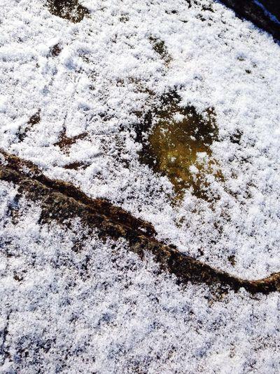 箕面の朝。うっすらと雪。氷も3cmくらい張ってます。 Water_collection Good Morning